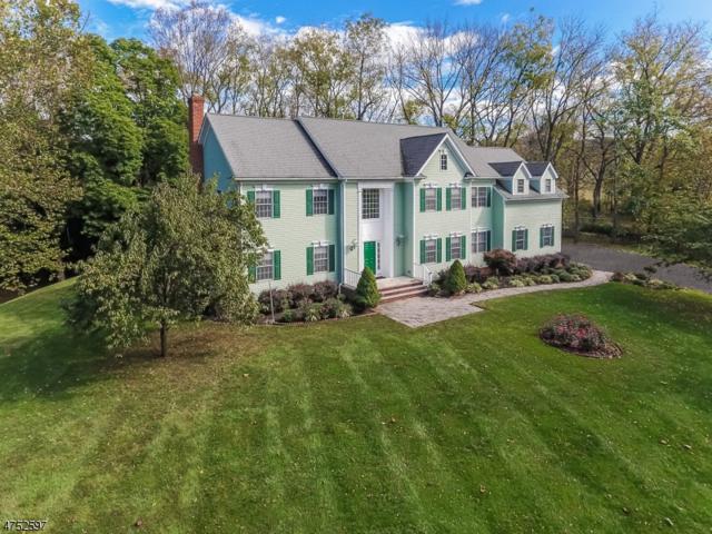 100 Main St, Peapack Gladstone Boro, NJ 07977 (MLS #3423967) :: The Dekanski Home Selling Team