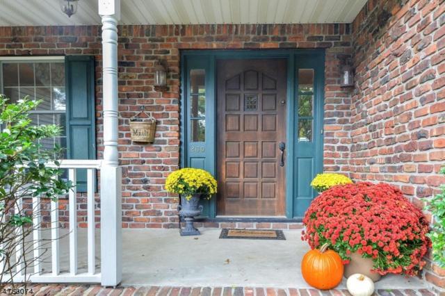 260 Oldwoods Rd, Franklin Lakes Boro, NJ 07417 (MLS #3424174) :: The Dekanski Home Selling Team