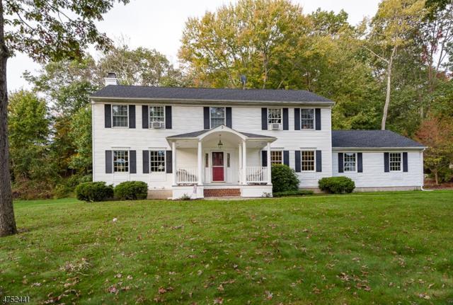5 Woods Ave, Stanhope Boro, NJ 07874 (MLS #3424737) :: The Dekanski Home Selling Team