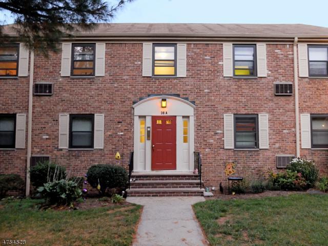 38 Sandra Circle #38, Westfield Town, NJ 07090 (MLS #3425524) :: The Dekanski Home Selling Team