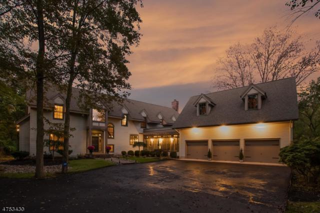 86 Viburnum Dr, Montgomery Twp., NJ 08558 (MLS #3426069) :: The Dekanski Home Selling Team