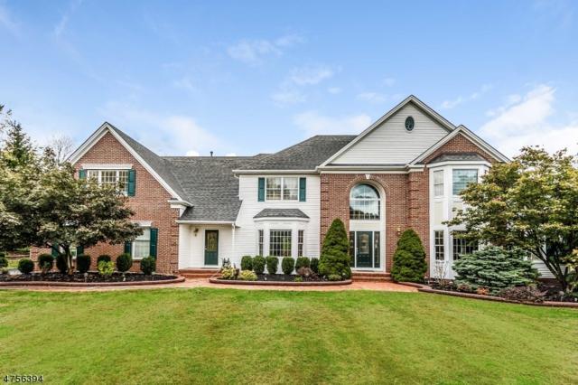 3 Regal Way, Raritan Twp., NJ 08822 (MLS #3427530) :: SR Real Estate Group