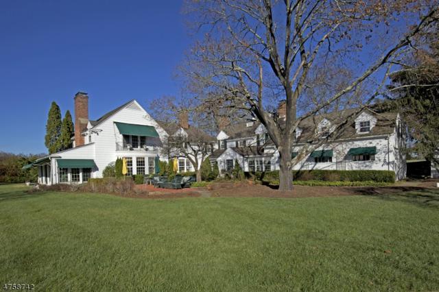 1310 Lamington Road, Bedminster Twp., NJ 07921 (MLS #3432129) :: SR Real Estate Group