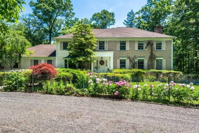 11 N Gate Rd, Mendham Twp., NJ 07945 (MLS #3437535) :: The Sue Adler Team