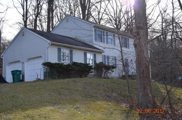 5 Summer St, Hardyston Twp., NJ 07460 (MLS #3437874) :: SR Real Estate Group