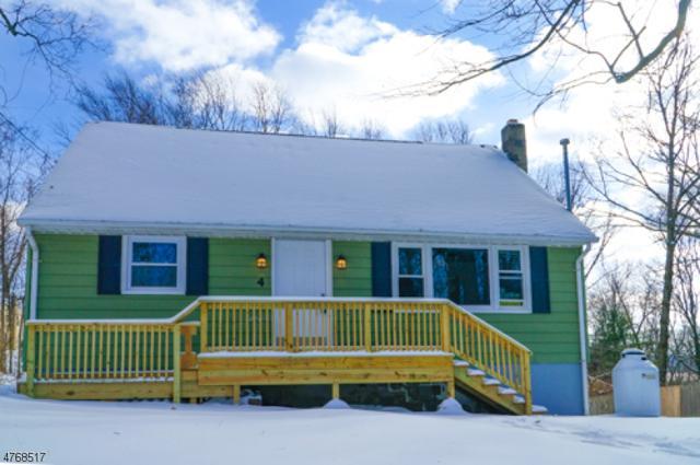 4 Butternut Rd, Vernon Twp., NJ 07462 (MLS #3438300) :: SR Real Estate Group