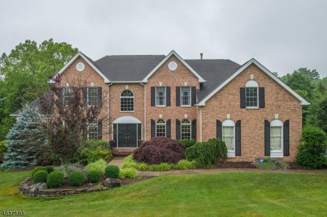 19 Spring Lake Dr, Chester Twp., NJ 07931 (MLS #3438588) :: The Sue Adler Team