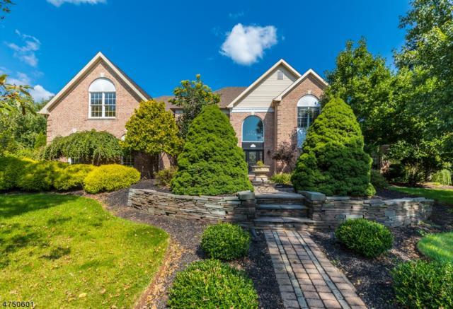 91 Southfield Dr, Montgomery Twp., NJ 08502 (MLS #3439595) :: SR Real Estate Group