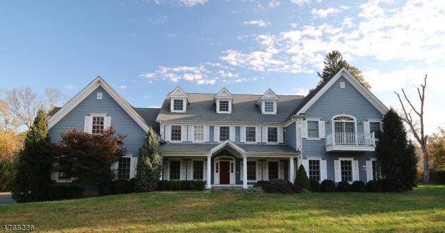 322 Whitenack Rd, Bernards Twp., NJ 07931 (MLS #3439949) :: SR Real Estate Group