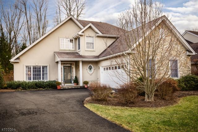 3 Bethpage Dr, Montgomery Twp., NJ 08558 (MLS #3441565) :: The Dekanski Home Selling Team