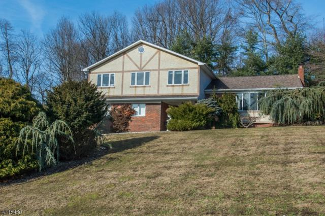 125 Andrea Dr, Rockaway Boro, NJ 07866 (MLS #3442648) :: SR Real Estate Group
