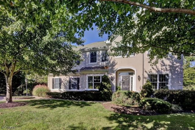 7 Wild Dunes Ct, Montgomery Twp., NJ 08558 (MLS #3443917) :: SR Real Estate Group