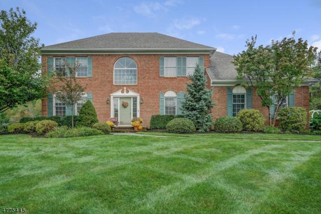 3 Hardin Ct, Chester Twp., NJ 07930 (MLS #3444333) :: SR Real Estate Group