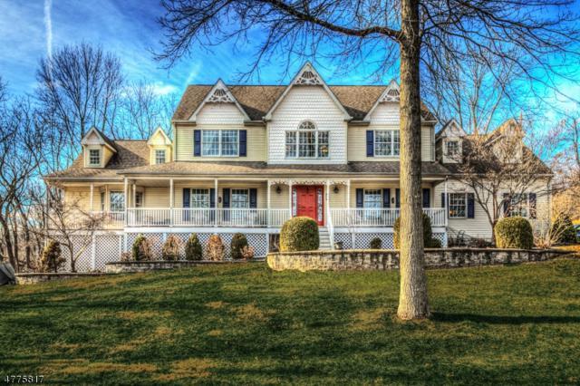 3 Alpine Pl, Raritan Twp., NJ 08822 (MLS #3445551) :: SR Real Estate Group