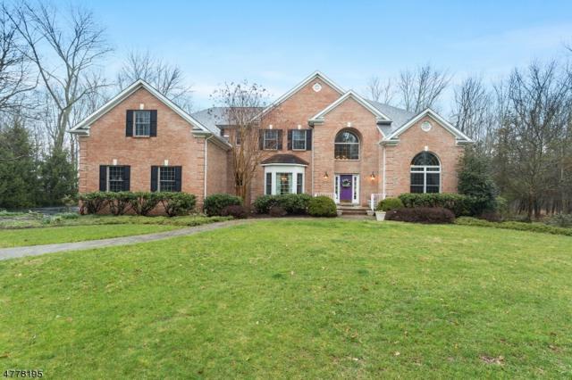 97 Wild Azalea Ln, Montgomery Twp., NJ 08558 (MLS #3446854) :: SR Real Estate Group