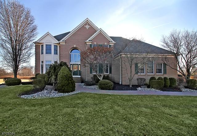 16 Horseshoe Dr, Hillsborough Twp., NJ 08844 (MLS #3446961) :: SR Real Estate Group