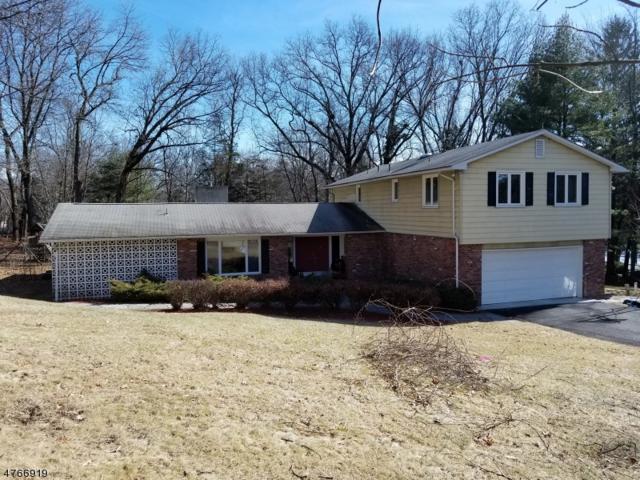 3 Fox Ridge Rd, Sparta Twp., NJ 07871 (MLS #3447633) :: SR Real Estate Group