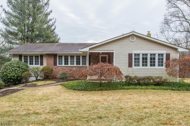 6 Flanders Drakestown Rd, Mount Olive Twp., NJ 07836 (MLS #3448564) :: RE/MAX First Choice Realtors