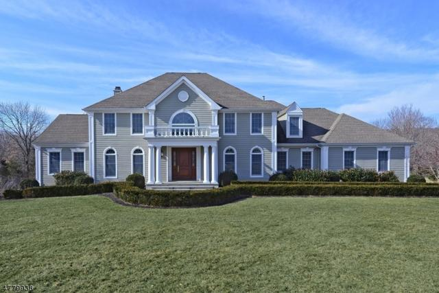 26 Clearview Rd, Readington Twp., NJ 08889 (MLS #3448628) :: SR Real Estate Group