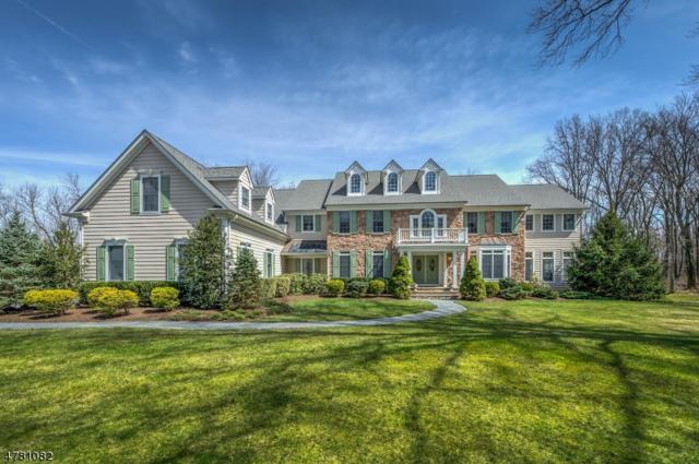 30 Birchwood Drive, Montgomery Twp., NJ 08540 (MLS #3450194) :: SR Real Estate Group