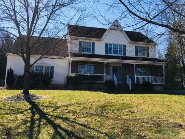 3 Vliet Drive, Hillsborough Twp., NJ 08844 (MLS #3450229) :: SR Real Estate Group