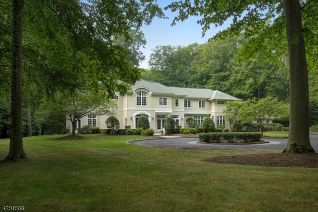 26 Sand Spring Ln, Harding Twp., NJ 07960 (MLS #3450615) :: SR Real Estate Group