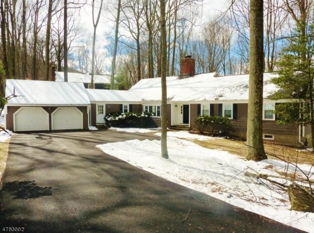 55 Mockingbird Rd, Allamuchy Twp., NJ 07840 (MLS #3451322) :: RE/MAX First Choice Realtors