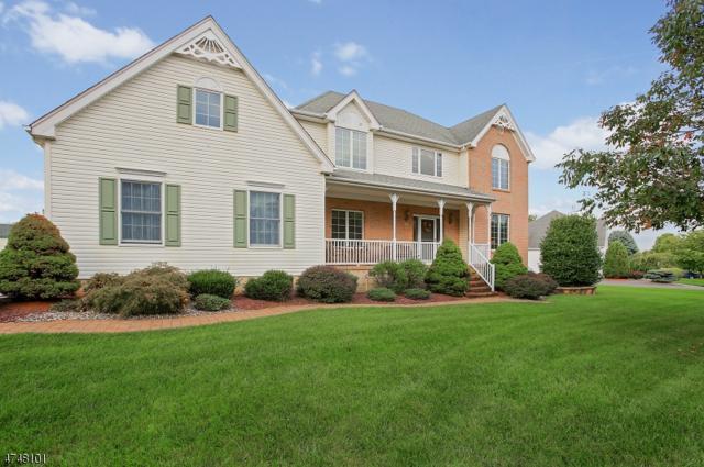 15 Matrick Ct, Hillsborough Twp., NJ 08844 (MLS #3452179) :: SR Real Estate Group