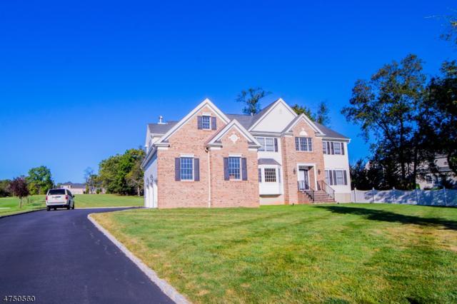 4 Petrik Farm Rd, Hillsborough Twp., NJ 08844 (MLS #3452332) :: SR Real Estate Group