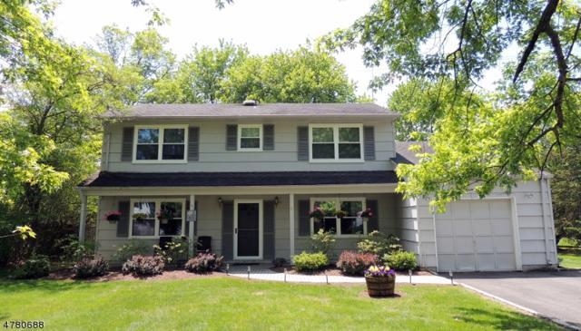 51 Biscay Dr, Mount Olive Twp., NJ 07836 (MLS #3452831) :: SR Real Estate Group