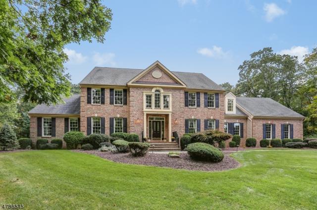 5 Allyson Ct, Fl, Washington Twp., NJ 07853 (MLS #3454475) :: SR Real Estate Group