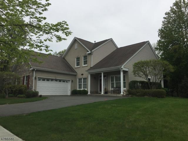 27 Otter Creek Rd, Montgomery Twp., NJ 08558 (MLS #3455129) :: The Dekanski Home Selling Team