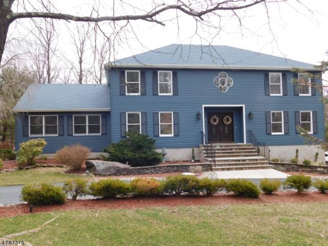 31 Tower Hill Ln, Kinnelon Boro, NJ 07405 (MLS #3455390) :: SR Real Estate Group