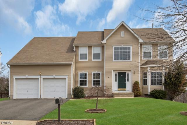 919 Timberline Drive, Jefferson Twp., NJ 07849 (MLS #3455661) :: SR Real Estate Group