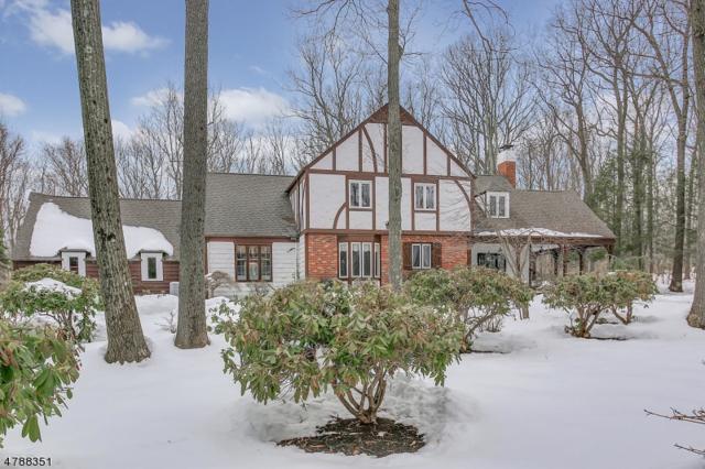 32 Horizon Dr, Mendham Twp., NJ 07945 (MLS #3456222) :: SR Real Estate Group