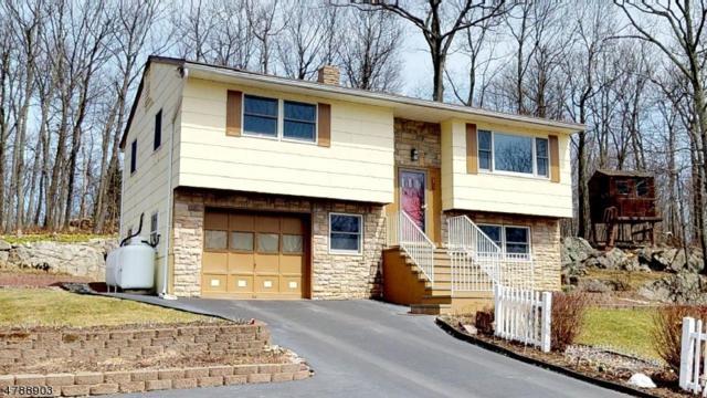 25 Elm Tree Rd, Vernon Twp., NJ 07422 (MLS #3456477) :: SR Real Estate Group