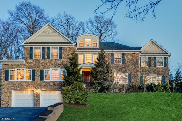 236 Long Hill Dr, Millburn Twp., NJ 07078 (MLS #3456993) :: SR Real Estate Group