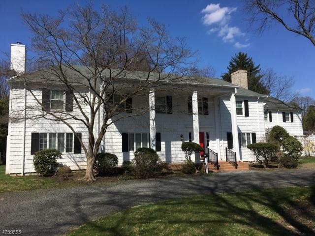 247 Piedmont Dr, Bound Brook Boro, NJ 08805 (MLS #3457030) :: The Sue Adler Team
