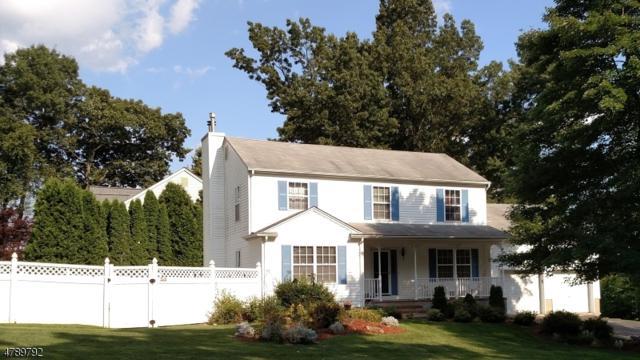 5 Anderson Rd, Wharton Boro, NJ 07885 (MLS #3457358) :: The Sue Adler Team