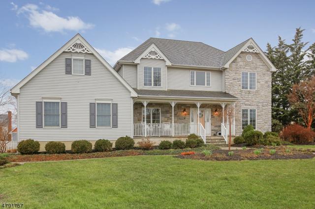 3 Smith Ct, Hillsborough Twp., NJ 08844 (MLS #3459130) :: SR Real Estate Group