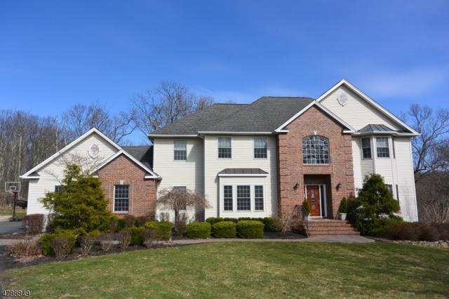 14 Valhalla Way, Rockaway Twp., NJ 07866 (MLS #3459573) :: SR Real Estate Group