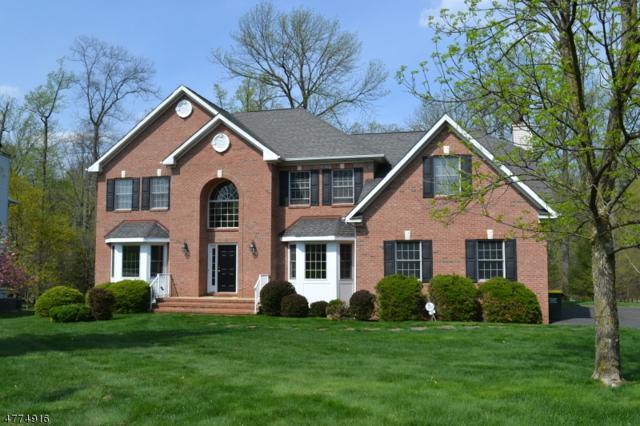 16 Schindelar Woods Way, Warren Twp., NJ 07059 (MLS #3459830) :: The Sue Adler Team