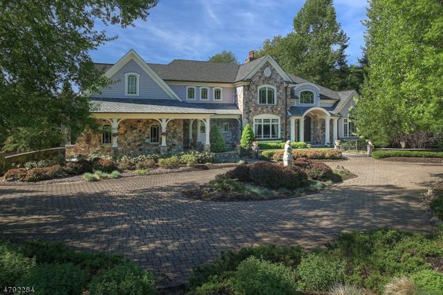 11 Ashland Ter, Chester Twp., NJ 07930 (MLS #3461084) :: SR Real Estate Group