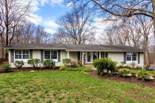338 Spring Hill Rd, Montgomery Twp., NJ 08558 (MLS #3461540) :: The Sue Adler Team