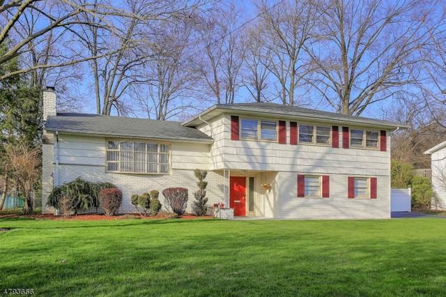 50 Frances Dr, Clark Twp., NJ 07066 (MLS #3461908) :: The Dekanski Home Selling Team