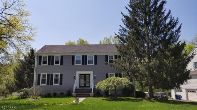 155 Cottage Pl W, Long Hill Twp., NJ 07933 (MLS #3463264) :: The Sue Adler Team