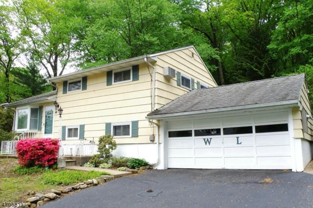 44 Warren Trl, Denville Twp., NJ 07834 (MLS #3464050) :: The Dekanski Home Selling Team