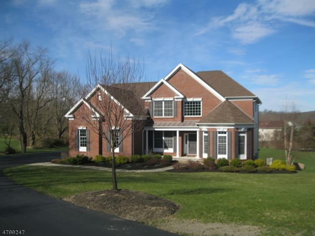 37 High Ridge Ln, Frankford Twp., NJ 07822 (MLS #3466078) :: William Raveis Baer & McIntosh