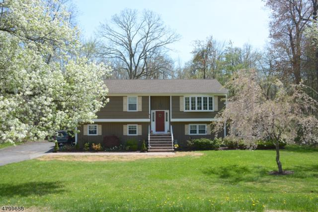 51 Milton Ave, Long Hill Twp., NJ 07933 (MLS #3466405) :: The Sue Adler Team