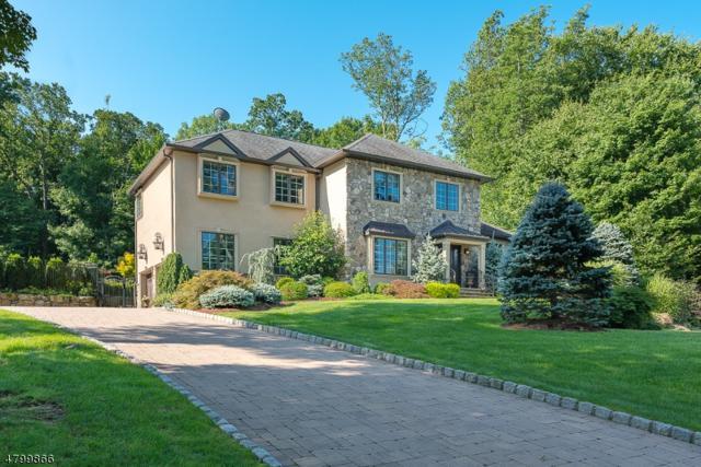 5 Blanchard Ct, Randolph Twp., NJ 07869 (MLS #3466601) :: SR Real Estate Group